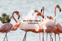 ab-in-den-urlaub.de: 50€ Gutschein für Reisen