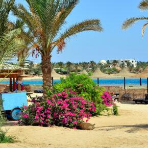 Single-Deal Neueröffnung: 7 Tage Ägypten im TOP 5* All Inclusive Hotel mit Flug & Transfer nur 469€