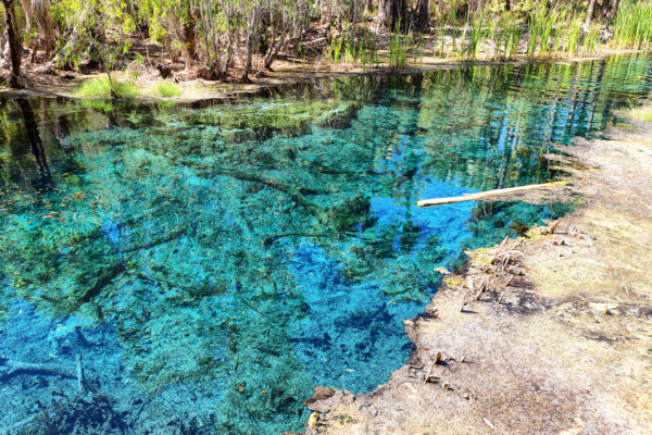 Australien Bitter Springs