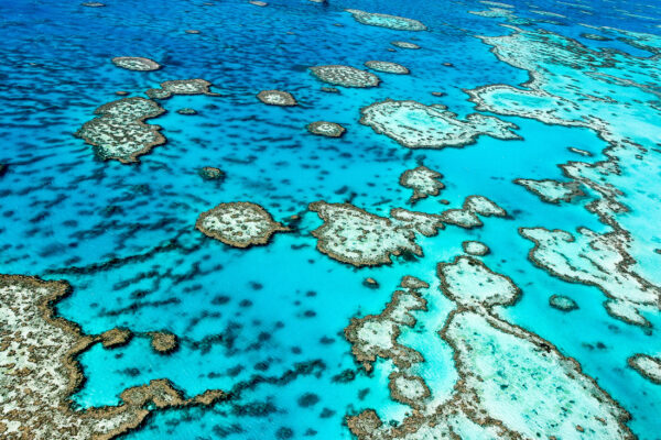 Australien Great Barrier Reef von oben