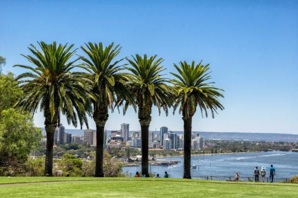 Australien Perth Kings Park