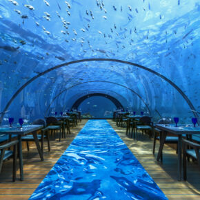 Hurawalhi Resort Underwater Restaurant