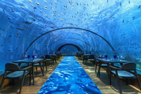 Luxusurlaub Malediven: Hurawalhi Resort Underwater Restaurant