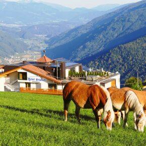 Südtirol: 3 Tage Wellness im TOP 3* Hotel mit Halbpension & Extras ab 99€