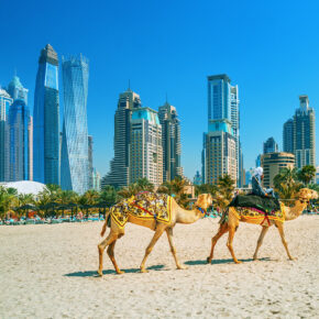 Familienurlaub in Dubai: 6 Tage im TOP 4* Hotel mit Frühstück, Flug, Transfer & Zug nur 395€
