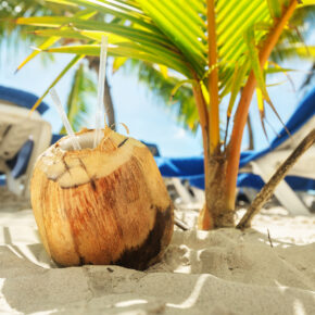 Traumurlaub in der Dom Rep: 8 Tage im 5* Hotel direkt am Strand mit All Inclusive, Flug & Transfer für 1.087€
