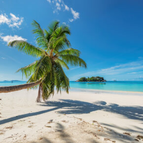 Urlaub auf Jamaika: 8 Tage mit Unterkunft & Flug nur 375€