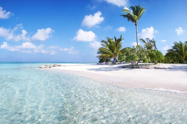 Malediven Klares Wasser
