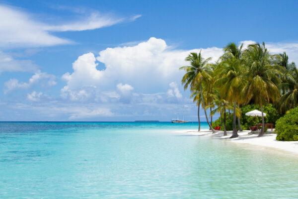 Malediven Palmenstrand