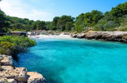Mallorca Megadeal: 7 Tage im guten 3.5* Hotel mit All Inclusive, Flug, Transfer & Zug für ...