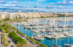 Last Minute Mallorca: 7 Tage im 4* RIU-Hotel mit Halbpension, Flug, Transfer & Zug für n...