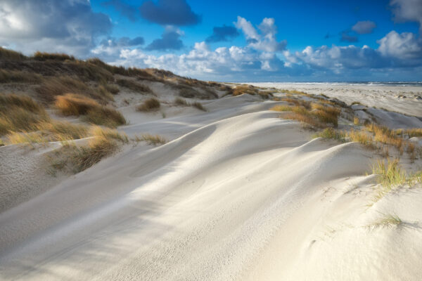 Niederlande Dünen Strand