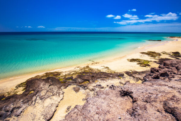 Spanien Kanaren Fuerteventura Costa Calma