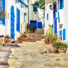 Tunesien: 7 Tage im TOP 5* Hotel mit All Inclusive, Flug, Transfer & Zug nur 350€