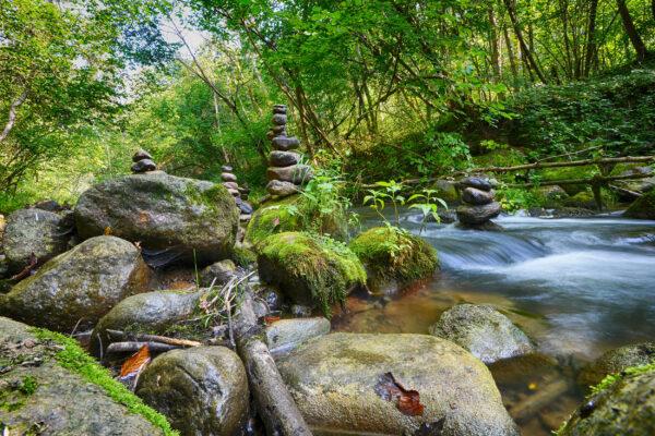 Bayerischer Wald Urlaub: Fluss