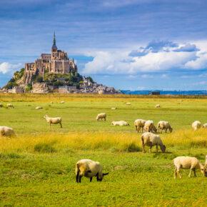 Frankreich Bretagne Le Mont Saint Michel