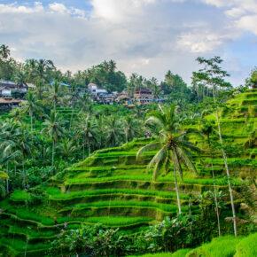 Indonesien Hammer: 8 Tage im Bungalow auf Bali für unglaubliche 7 Cent