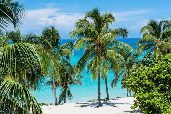 Kuba Varadero Weisser Strand