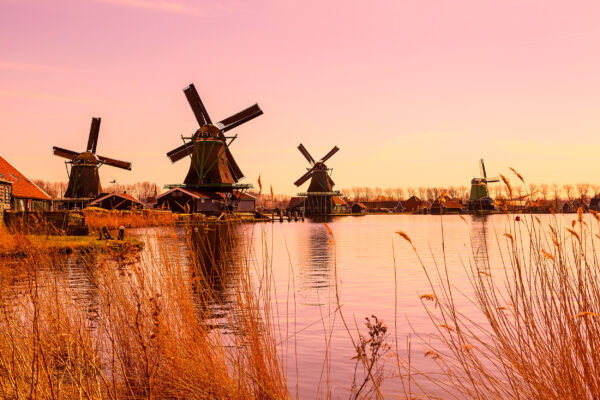 Niederlande Holland Tipps Pinke Windmühlen