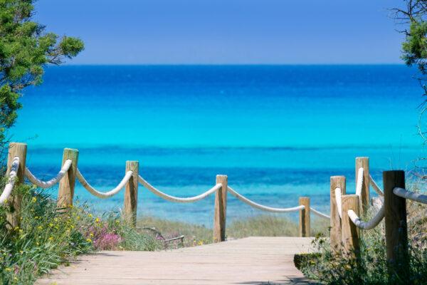 Spanien Ibiza Holzweg