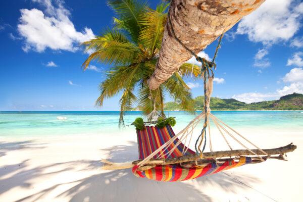 Tropischer Strand Hängematte