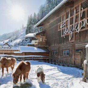 Feriendorf in den Alpen: 3 Tage im eigenen Chalet mit Wellness, Frühstück & Extras nur 172€