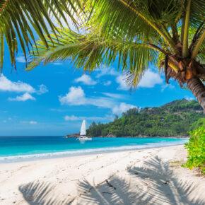 Chillen auf Jamaika: 8 Tage in gemütlicher Unterkunft mit Flug nur 461€