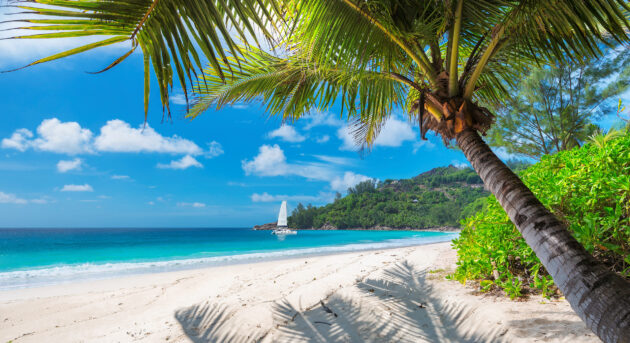 Jamaika Strand Boot