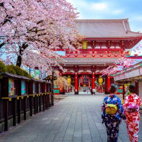 Tokio Tipps: Sehenswürdigkeiten, verrückte Cafés & hippe Clubs