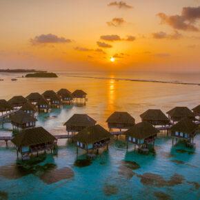 Traumhafte Rundreise: 14 Tage Sri Lanka & Malediven inklusive Flug, Transfer, Hotels & Halbpension nur 2.199€