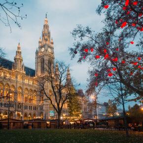 Österreich Wien Weihnachtsmarkt Wiener Rathaus