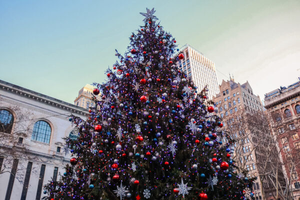 USA New York Christbaum