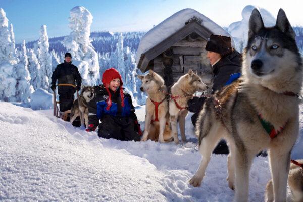 Weihnachtsmanndorf Lappland Husky Tour