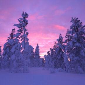 Winter in Finnland: 8 Tage im Ferienhaus am See mit Sauna nur 170€