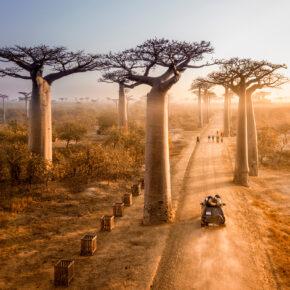 Abenteuer Rundreise Madagaskar: 21 Tage mit allen Hotels inkl. Frühstück, Flug & Transfers für 2.495€
