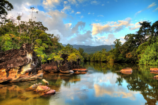 Madagaskar Masoala Nationalpark