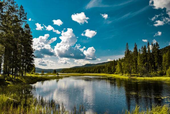 Top 12 Nationalparks in Schweden