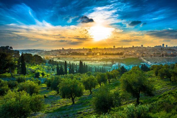 Israel Jerusalem Sonne gruen