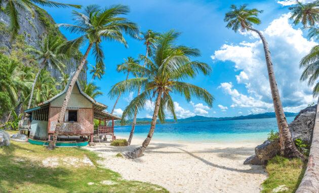 Philippinen Palawan Strand Palmen