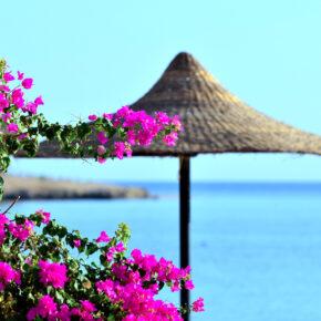 Beste Hotels Ägypten: Top bewertete Hotels im Überblick