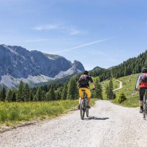 Nachhaltig Reisen: 3 Tage Österreich im TOP 4* Bio-Hotel mit Verwöhnpension & Wellness für 116€