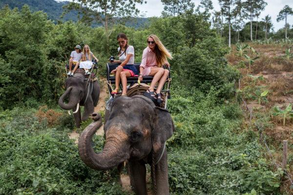 Elefanten reiten Jugendliche