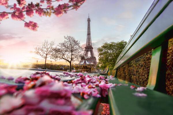 Frankreich Paris Frühling Blüten