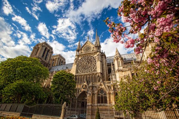 Frankreich Paris Frühling Notre Dame
