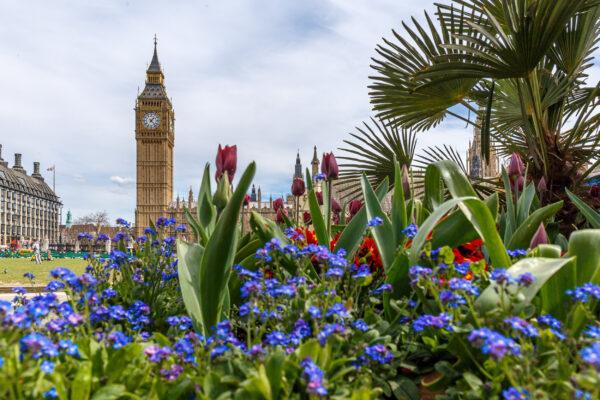 Großbritannien London Frühling Blumen