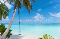 Luxus auf den Malediven: 9 Tage im TOP 5* Resort mit Vollpension, Flug & Wasserflugzeug-Transfer ab ...