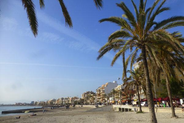 Mallorca El Arenal Palme