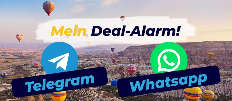 Landing-Page_Telegram-Whatsapp_800x350