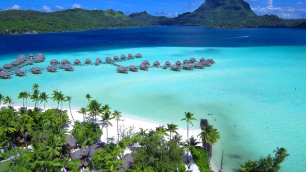 Bora Bora Meer Palmen