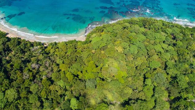 Costa Rica Playa Chiquita